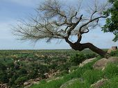 foto of dogon  - Panoramic from the top of a hill in an inland village of Mali - JPG