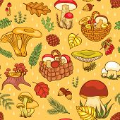 picture of chanterelle mushroom  - Seamless pattern with mushrooms - JPG