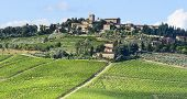 picture of farm landscape  - Landscape in Chianti  - JPG
