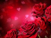 foto of rose  - Roses and Hearts background - JPG