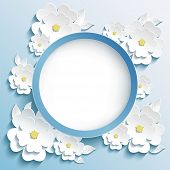 foto of sakura  - Beautiful trendy round frame with 3d white flowers sakura  - JPG