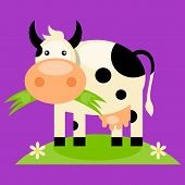 image of moo-cow  - Black and white cow with bell - JPG