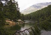 stock photo of lagos  - Scenic view of Lago Azzurro  - JPG