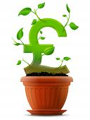 pic of bine  - Stylized plant in shape of pound sterling sign in ground - JPG