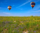 stock photo of golan-heights  - Flowering Golan Heights on a sunny day - JPG