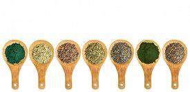 stock photo of irish moss  - seaweed and algae nutrition supplements  - JPG
