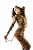 stock photo of catsuit  - Sexy woman is bending as a cat - JPG