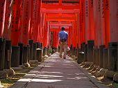 Tourist In Kyoto-Inari Gates Tunnel poster