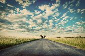 Empty straight long asphalt road. Dramatic cloudy sky. Concepts of travel, adventure, destination, t poster