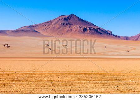 Salvador Dali Desert Also Known