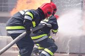 Firefighters In Action Spraying Fire With Fire Hose. Fire Department Training. poster