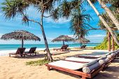 Beach Beds With Umbrellas On The Tropical Sunny Beach In Sri Lanka. Scenic Idyllic View Of A Sand Be poster