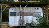 image of travel trailer  - trashy old travel trailer under a moss - JPG