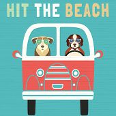 Time For Adventure. Cute Comic Cartoon. Colorful Humor Retro Style. Dogs Go By Bus To Beach For Fun  poster