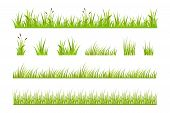 Vector Illustration Of Green Grass, Natural Grass Elements Isolated White Background, Green Grass Bo poster