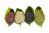 stock photo of soy bean  - Red bean - JPG