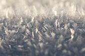 Hoarfrost. White Frost. Frost. Small Crystals Of Ice. Winter Background. Christmas Background. Close poster