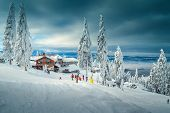 Amazing Winter Ski Resort With Skiers And Snowy Pine Trees. Famous Recreation And Winter Sport Holid poster