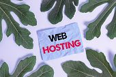 Conceptual Hand Writing Showing Web Hosting. Business Photo Text Business Of Providing Storage Space poster