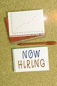 Word Writing Text Now Hiring. Business Concept For Workforce Wanted Employees Recruitment Today Job  poster