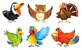 image of nocturnal animal  - Illustration of the different kinds of birds on a white background - JPG