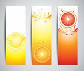 Juicy Citrus Splashes Banners, Vector