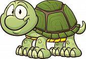 picture of turtle shell  - Cute turtle clip art - JPG