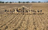 picture of cultivator-harrow  - Seedbed cultivator - JPG