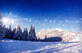 Fantastic winter landscape. Christmas abstract bokeh. Carpathian, Ukraine, Europe. Beauty world.
