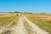 stock photo of farmhouse  - Dirt Road Leading to the Farmhouse in Tuscany Italy - JPG