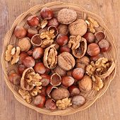 stock photo of hazelnut  - nuts - JPG