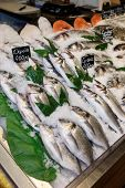 Choice of fish on market display, labels contain no trademarks