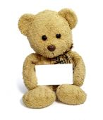 stock photo of stuffed animals  - close up of teddy bear holding blank note card on white background with clipping path - JPG