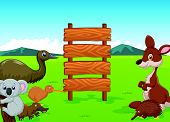 foto of platypus  - Vector illustration of Wild Australia cartoon with wooden sign - JPG