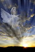 picture of archangel  - Angel with wings in front of heavenly light - JPG