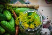 picture of pickled vegetables  - Top view of a jar of pickles and other ingredients for pickling - JPG