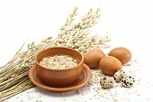 picture of porridge  - Served place setting - JPG