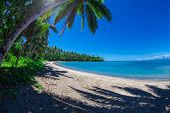 foto of samoa  - Tropical Samoa with white sandy beaches and coconut palms - JPG
