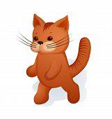 image of kitty  - Gentle teddy little kitty  - JPG