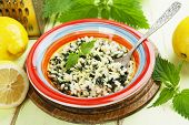 picture of nettle  - Risotto with nettles and lemon in the ceramic plate - JPG