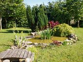 stock photo of fish pond  - Beautiful classical garden fish pond surrounded by grass gardening background - JPG