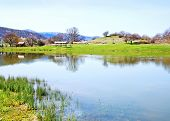 pic of crimea  - lake in Crimea spring nature in Crimea - JPG