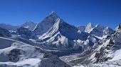 picture of cho-cho  - Beautiful morning scene in the Everest National Park - JPG