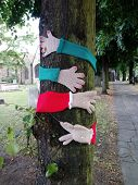 Woolen sleeves and gloves, hugging a tree, to represent. The environmental need for trees on our pla poster
