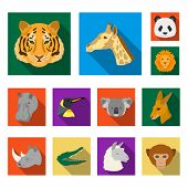 Wild Animal Flat Icons In Set Collection For Design. Mammal And Bird Vector Symbol Stock  Illustrati poster