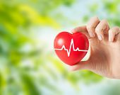 health, medicine, people and cardiology concept - close up of hand holding small red heart with card poster