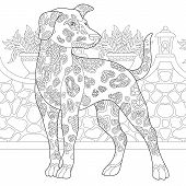Dalmatian Dog. Coloring Page. Colouring Picture. Adult Coloring Book Idea. Freehand Sketch Drawing.  poster