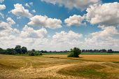 Countryside Landscape In Summer. Sunny Day In Countryside Fields. Country Road Through Fields. Count poster