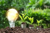 Light Bulb With Coins Beside And Young Plant On Top For Saving Money,financial,business Or Energy Co poster