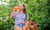 Drink Fresh Juice. Little Helper Concept. Ripe Veggies. Family Farm. Water Balance. Harvest Season.  poster